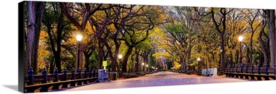 Panoramic View Of The Mall In Central Park