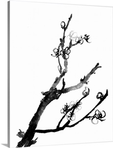 Plum Blossoms in Black and White Wall Art, Canvas Prints