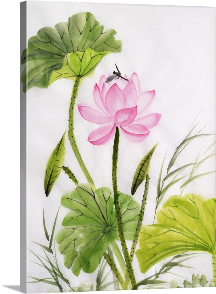 Watercolor Painting Of Lotus Flower Wall Art Canvas Prints Framed