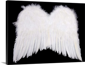 White Angel Wings Wall Art Canvas Prints Framed Prints