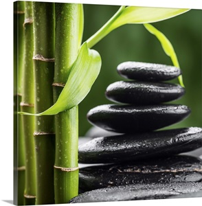 Zen Basalt Stones And Bamboo Wall Art Canvas Prints