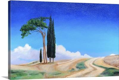 4 Trees, Picenza, Tuscany, 2002