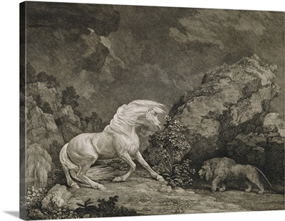 A Horse Affrighted by a Lion, engraved by the artist