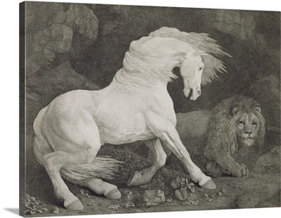 A Horse Affrighted by a Lion, engraved by the artist, pub. 1788
