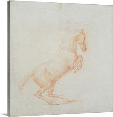 A Prancing Horse, facing right, 1790