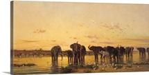 African Elephants (oil on canvas)