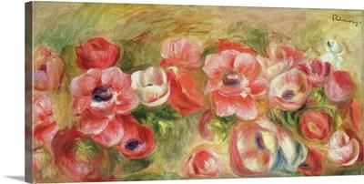 Anemones, 1890