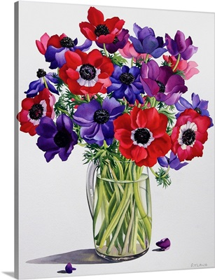Anemones in a Glass Jug, 2007