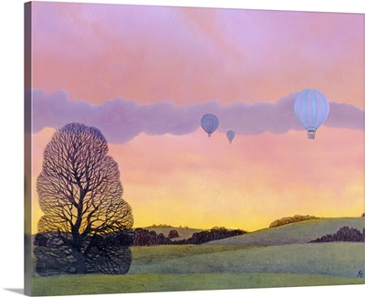 Balloon Race, 2004
