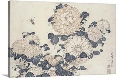 Bee and chrysanthemums, from the series Big Flowers