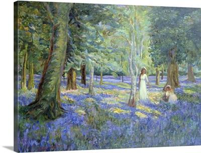 Bluebell Wood, 1908
