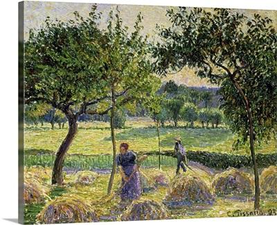 Bountiful Harvest, 1893