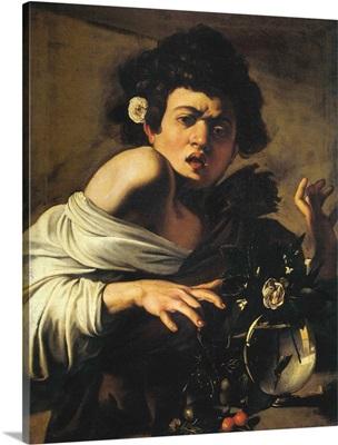 Boy Bitten By A Lizard, 1596-97