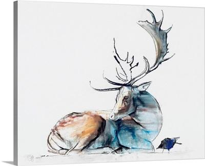 Buck and Bird, 2006