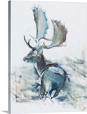 Buck in the Grass, 2006