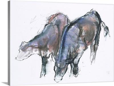 Calves, 2006