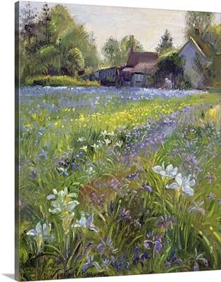 Dwarf Irises and Cottage, 1993