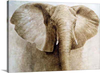 Elephant, 2004