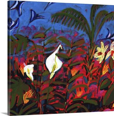 Exotic Garden, 2008