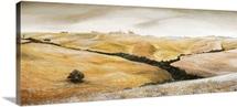Farm on Hill, Tuscany, 2001 (oil on canvas)