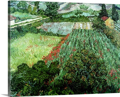 Field with Poppies, 1889