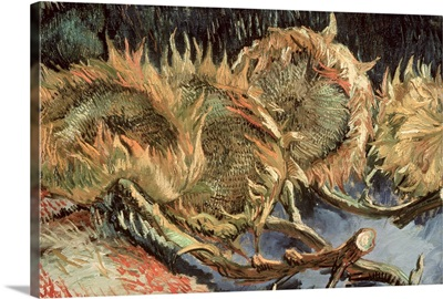 Four Withered Sunflowers, 1887