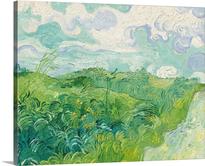 Green Wheat Fields, Auvers, 1890