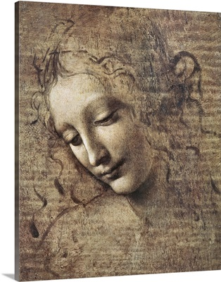Head of a Young Woman with Tousled Hair or, Leda
