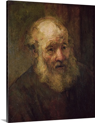 Head of an Old Man, c.1650