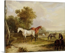 Horses Grazing: A Grey Stallion grazing with Mares in a Meadow (oil on canvas)