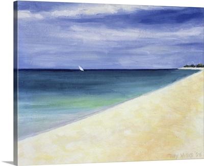 Indian Ocean II, 1995