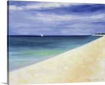 Indian Ocean II, 1995 (oil on canvas)