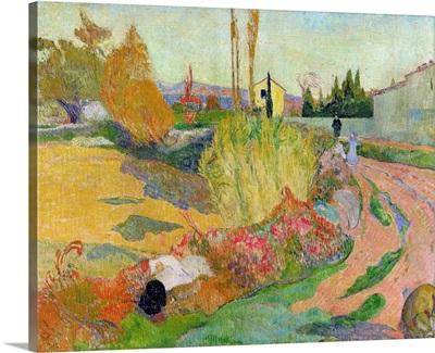 Landscape at Arles, 1888