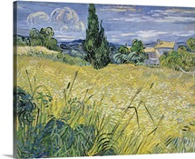 Landscape with Green Corn, 1889 (oil on canvas)