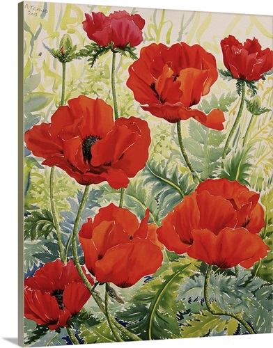 Large Red Poppies Wall Art, Canvas Prints, Framed Prints, Wall Peels ...