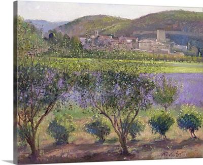 Lavender Seen Through Quince Trees, Monclus