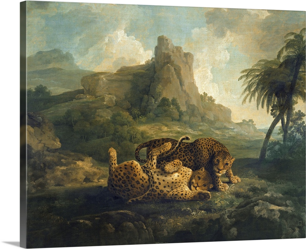 Leopards at Play, c.1763 8