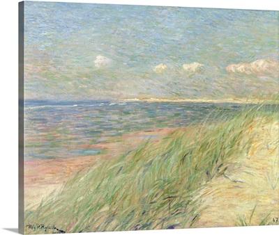 Les Dunes du Zwin, Knokke, 1887