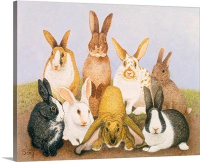 Lucky Rabbits