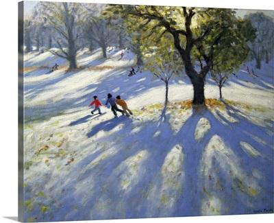 Markeaton Park, early snow