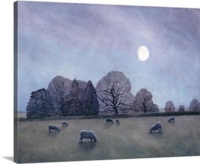 Moonlit Night, 2004