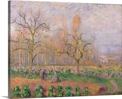 Orchard at Pontoise, 1878