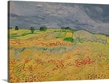 Plain at Auvers, 1890 (oil on canvas)