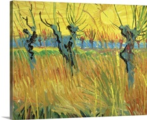 Pollarded Willows and Setting Sun, 1888 (oil on card)