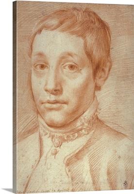 Portrait of His Son, Antonio Carracci, 1592-95