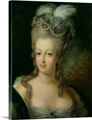 Portrait of Marie Antoinette de Habsbourg Lorraine (1755 93)