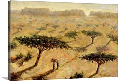 Sahelian Landscape, 2002