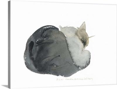 Sleeping Cat, 1985