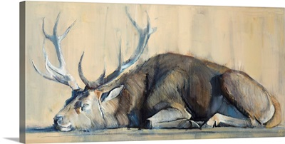 Stag, 2014