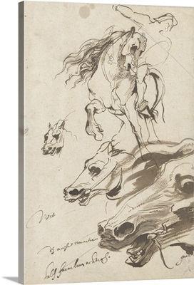 Study of Rider and head of a Horse, 1620-1